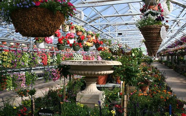 Honeymoon Acres Greenhouse